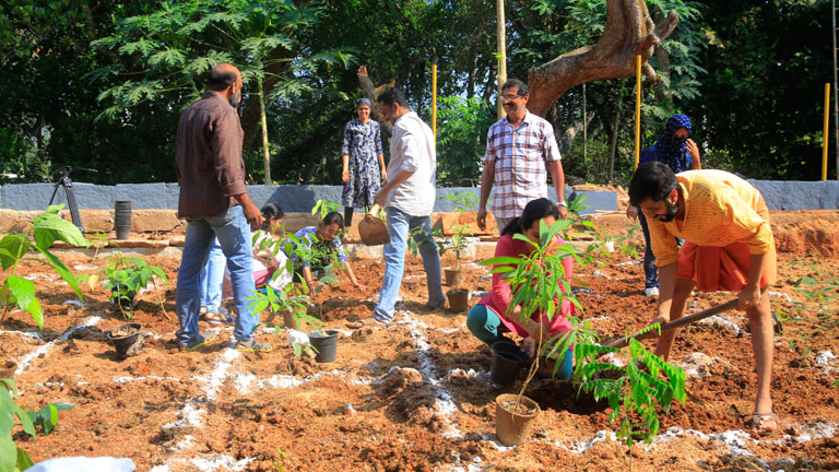 Planting process of our first CSR project