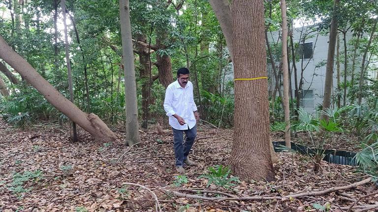M.R.Hari visiting Miyawaki forest on Rocky Hill, Kanagawa Prefecture, Japan