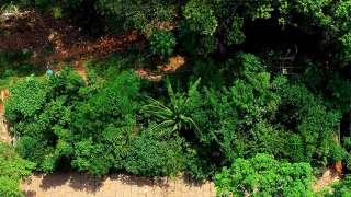 Ariel View of Kanakakkunnu Forest