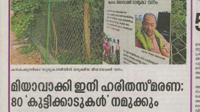 മിയാവാക്കി ഇനി ഹരിതസ്മരണ; 80 'കുട്ടിക്കാടുകൾ' നമുക്കും